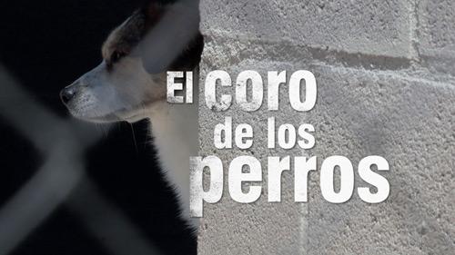 LCB3_elcorodelosperrost