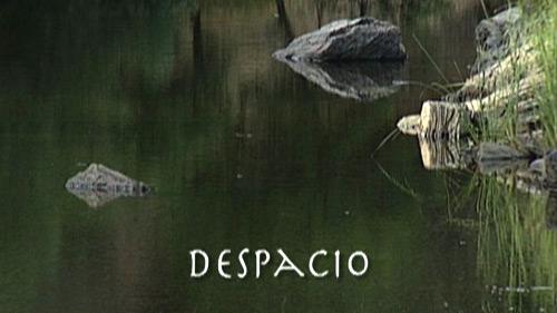 despaciot