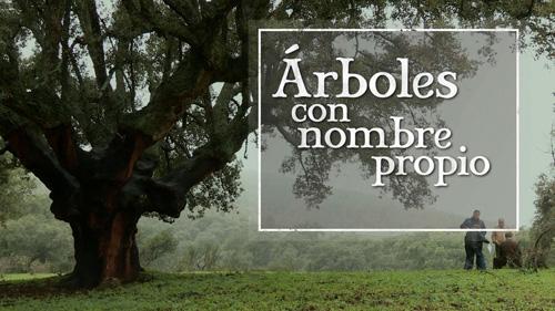 LCB3_arbolesconnombrepropiot