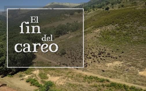 EL FIN DEL CAREO_ MASTER DE EMISIÓN